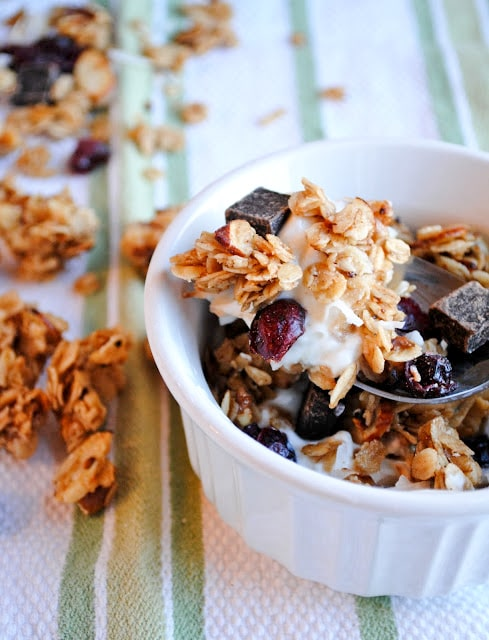 chocolate cranberry granola 1