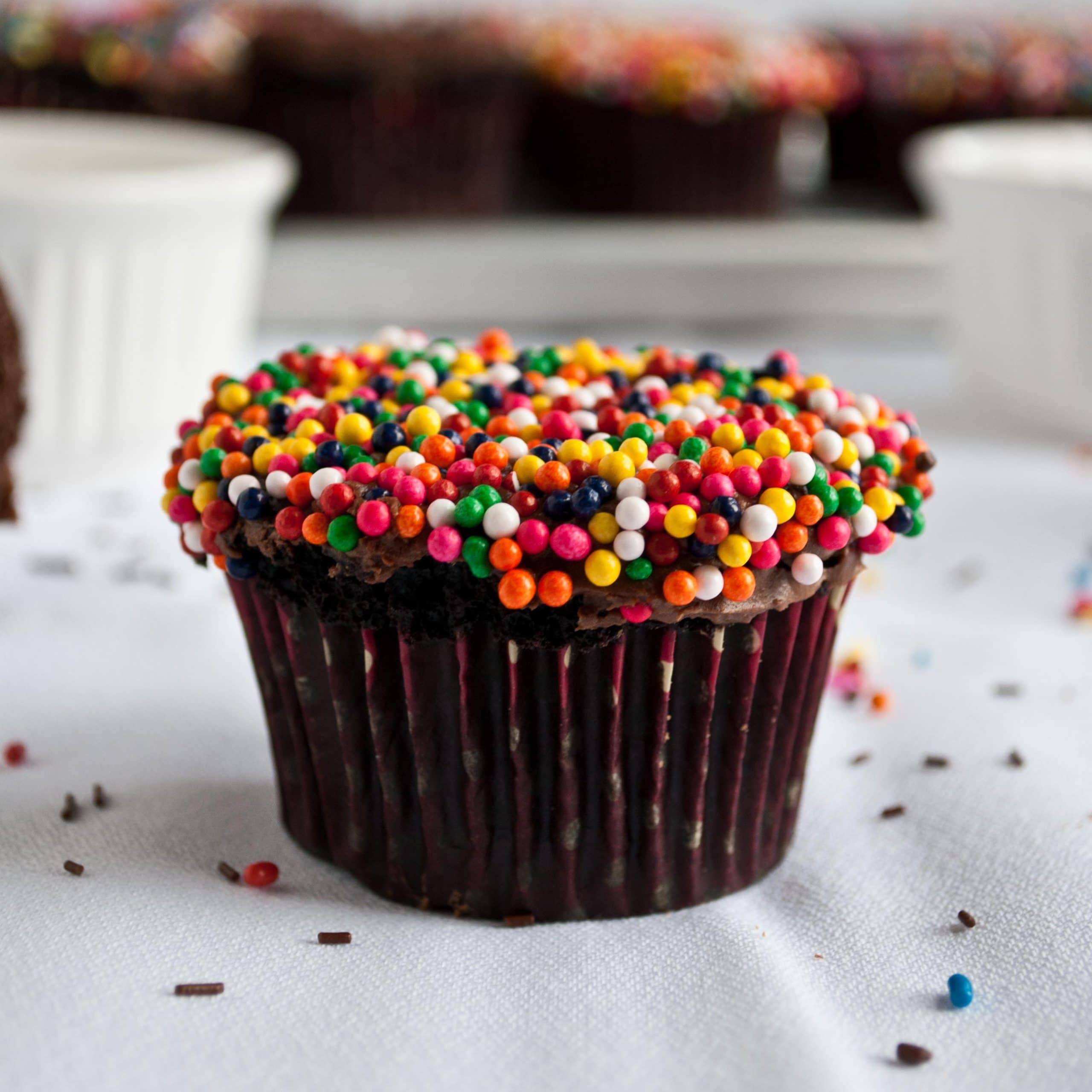 Double Chocolate Cupcakes with Sprinkles