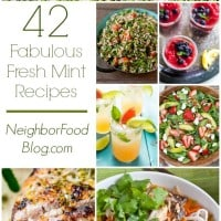 A refreshing collection of 42 sweet and savory recipes using fresh mint!
