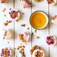 Berry Frozen Yogurt Bites with Honey Granola