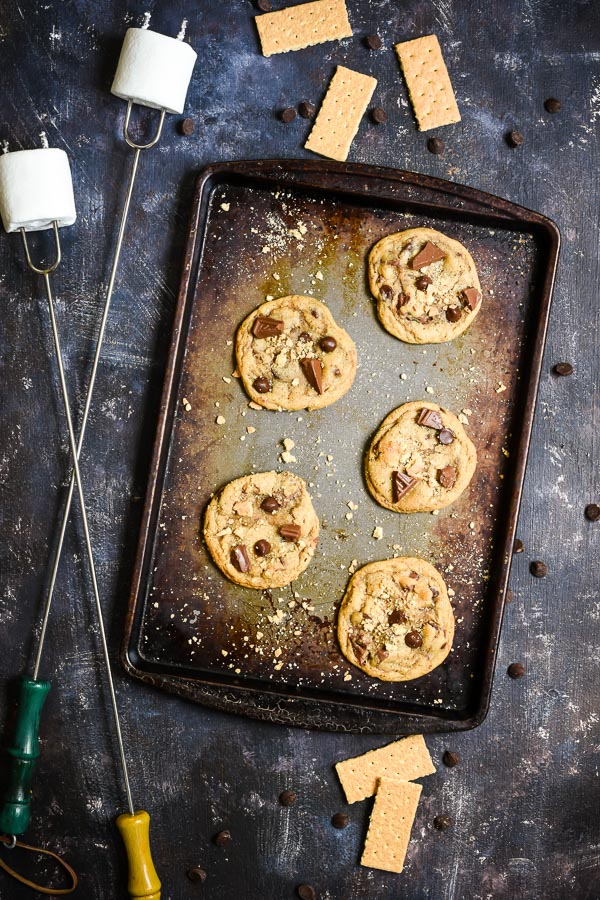 Graham Cracker Chocolate Chip Cookies make the perfect sandwich for a toasted marshmallow!