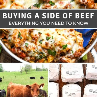 Interested in buying a side of beef? This post walks you through the process from finding a farmer to processing and storing!