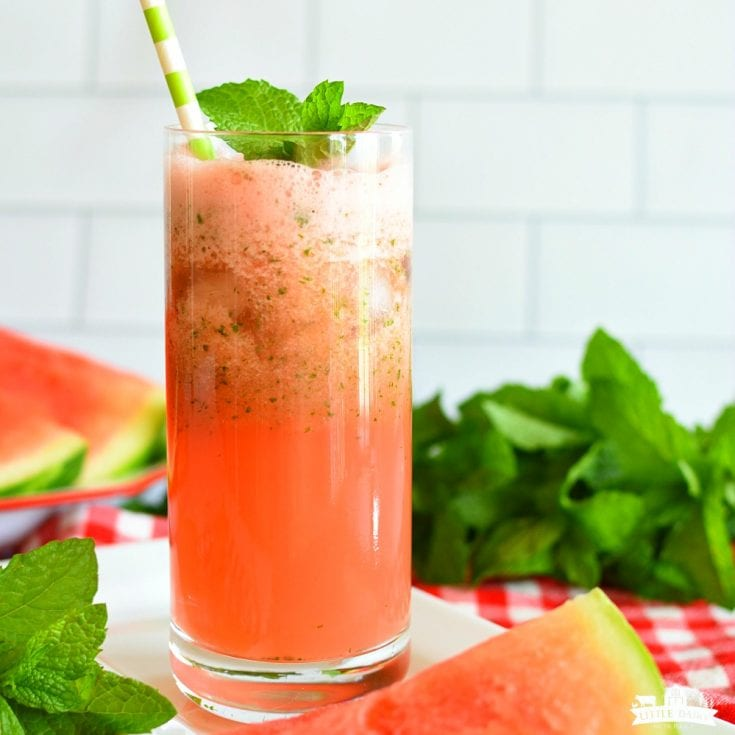 Drink: Slushy Watermelon Mint Lemonade
