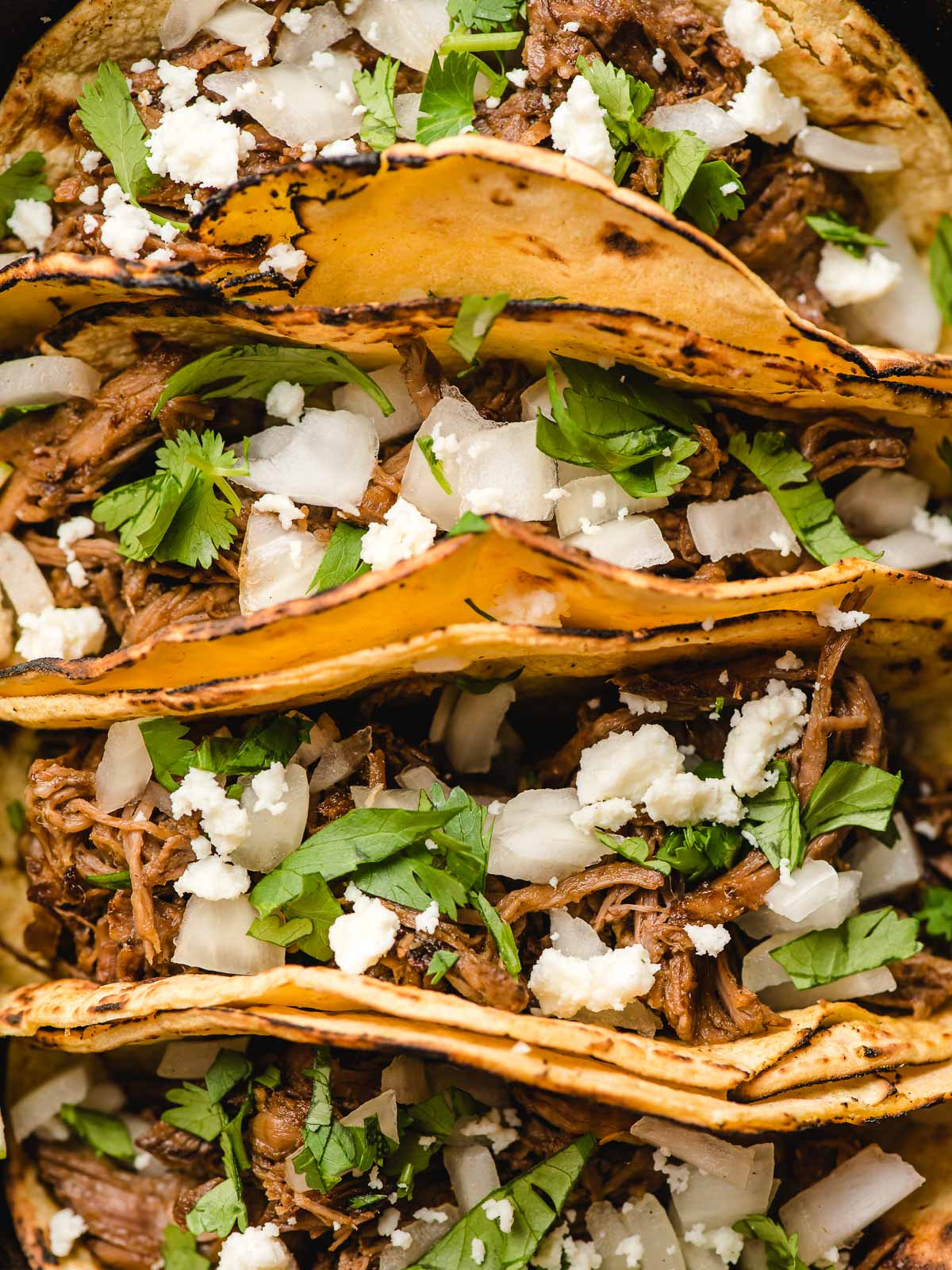 Barbacoa beef tacos topped with cilantro, chopped onions, and queso fresco.